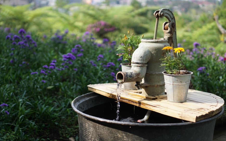 Everything You Need to Know About Water Quality Month
