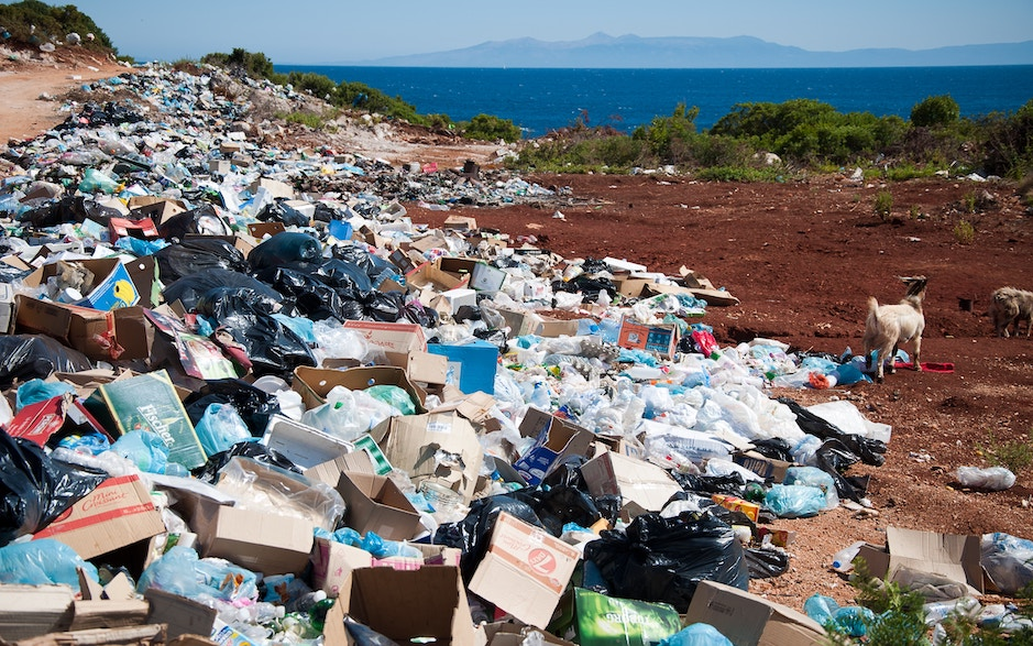 Kenya Has the Strictest Plastic Bag Ban on the Planet; How Successful Has it Been?