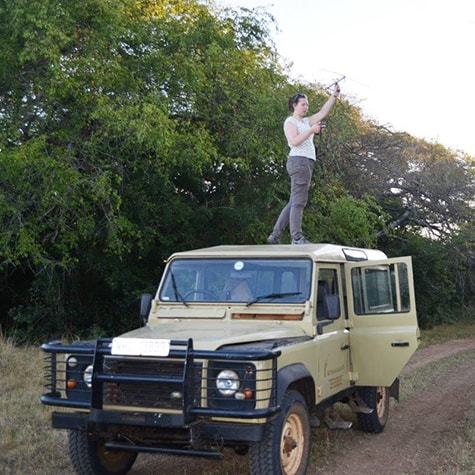 Volunteer elephant tracking conservation South Africa