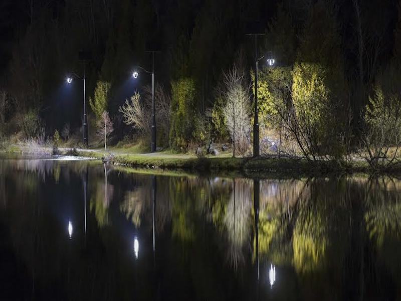 Lily Lake, Rockwood Park