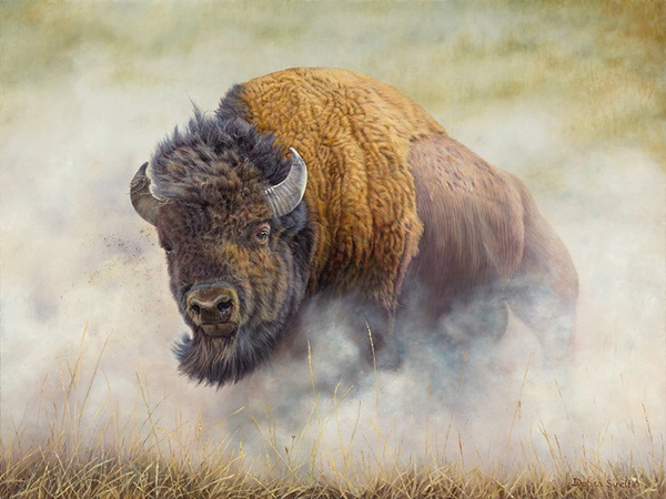 """""""Thunderbeast"""" - 30""""x 37"""" Oil on Linen- Bison-  Prints Available"""