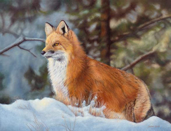 """Snow Patrol"" - 24""x 28"" Oil on Linen-Fox- Prints Available"