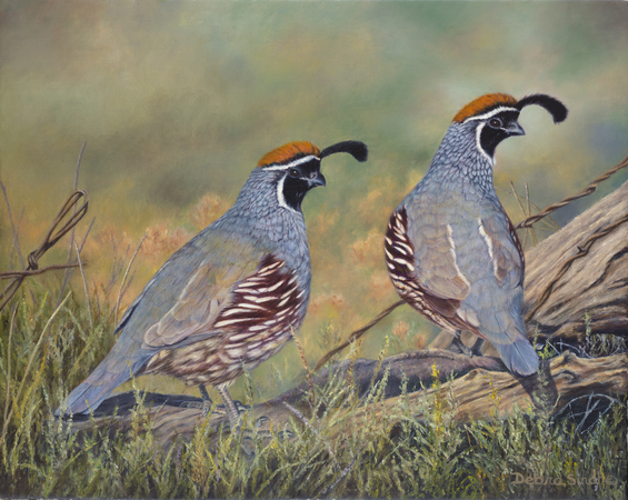 """Prairie Scouts"" - 14""x 18"" Oil on Linen- Prints Available"