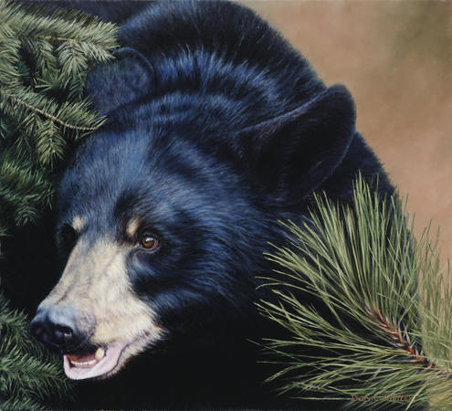 """The Big Black Bear"" - 20""x 22"" Oil on Linen- Prints Available"